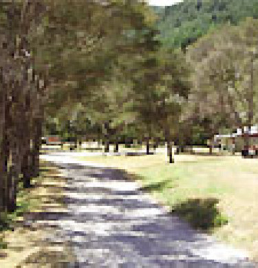 Picture of Maitai Valley Motor Camp, Nelson