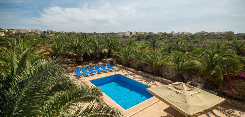 View on the pool - Balcony view on the swimming pool, palm trees and loungers in villa in Gozo