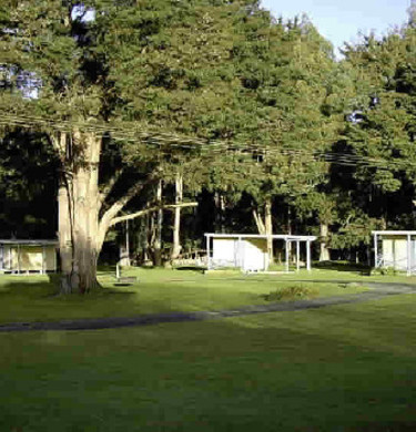 Picture of Taumarunui Holiday Park, Auckland