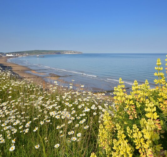 View across the Bay - Sandown - Wight Holiday Lettings