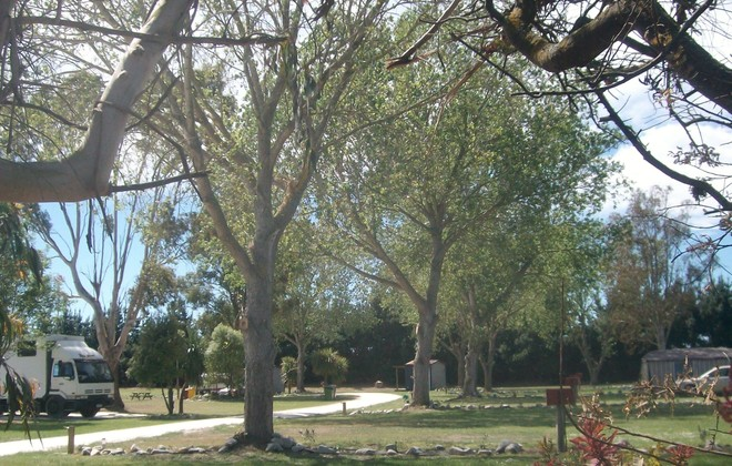 Our park - Approximately 4 acres of park like grounds