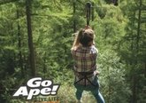 go-ape-competition-canva_t4