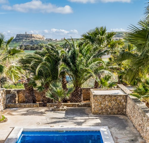 Surroundings of the swimming pool - Palm trees and beautiful views around the villa