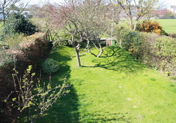 View of garden from master bedroom