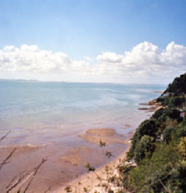 Picture of Big Bay Motor Camp & Fishing Lodge, Auckland