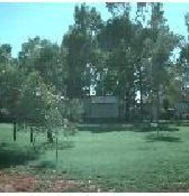 Picture of Cobdogla Station Caravan Park, Riverland
