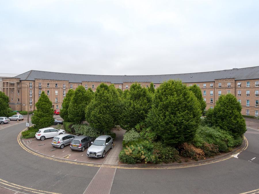 Photo of The Alba Morrison Residence