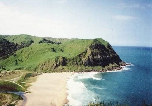 Tropical Island Beach Ambience Sound: Waipatiki Beach Farm Park, Napier, East Cape