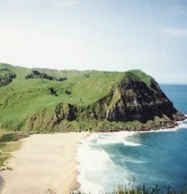 Picture of Waipatiki Beach Farm Park, East Cape