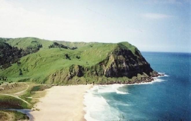 Picture Of Waipatiki Beach Farm Park East Cape