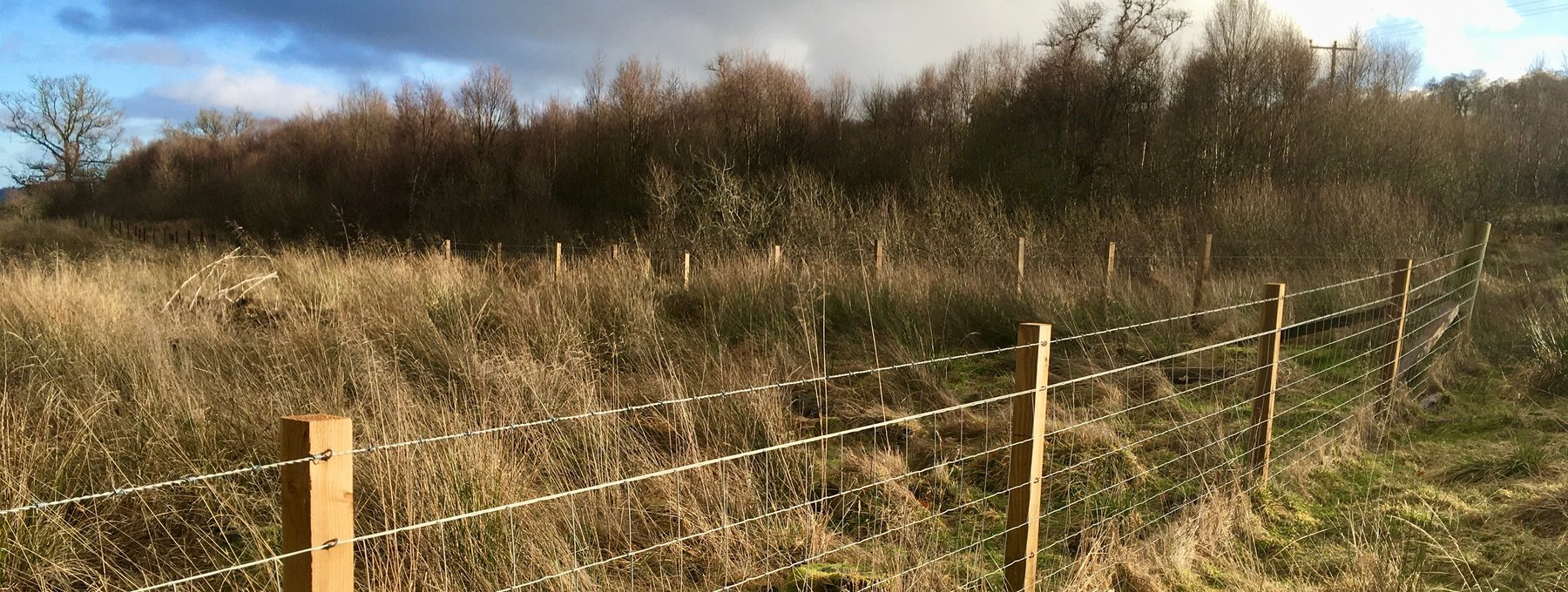 Murthly Sawmill erected fence - Our fencing products are used by 100s of farmers across Scotland. (© Murthly Estate)